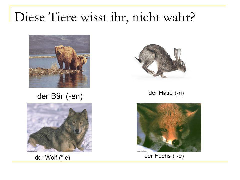 Diese Tiere wisst ihr, nicht wahr