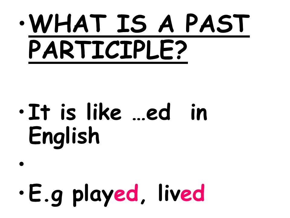 WHAT IS A PAST PARTICIPLE