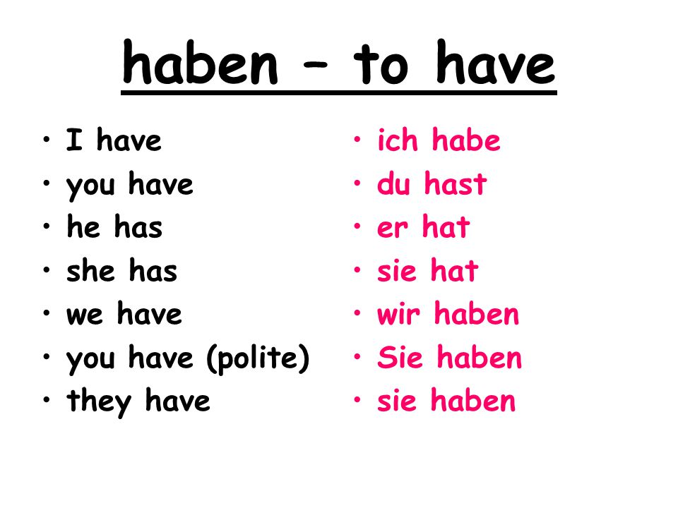 haben – to have I have you have he has she has we have