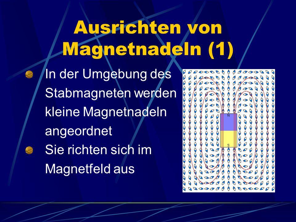 Ausrichten von Magnetnadeln (1)