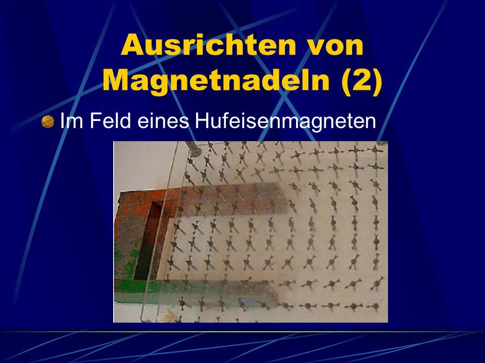 Ausrichten von Magnetnadeln (2)