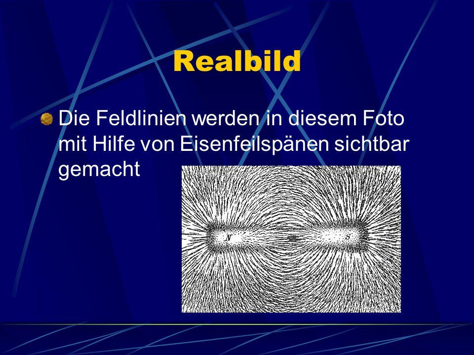 Realbild Die Feldlinien werden in diesem Foto mit Hilfe von Eisenfeilspänen sichtbar gemacht