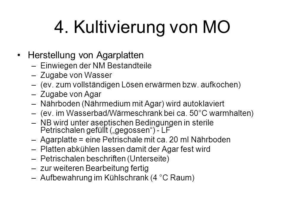 4. Kultivierung von MO Herstellung von Agarplatten