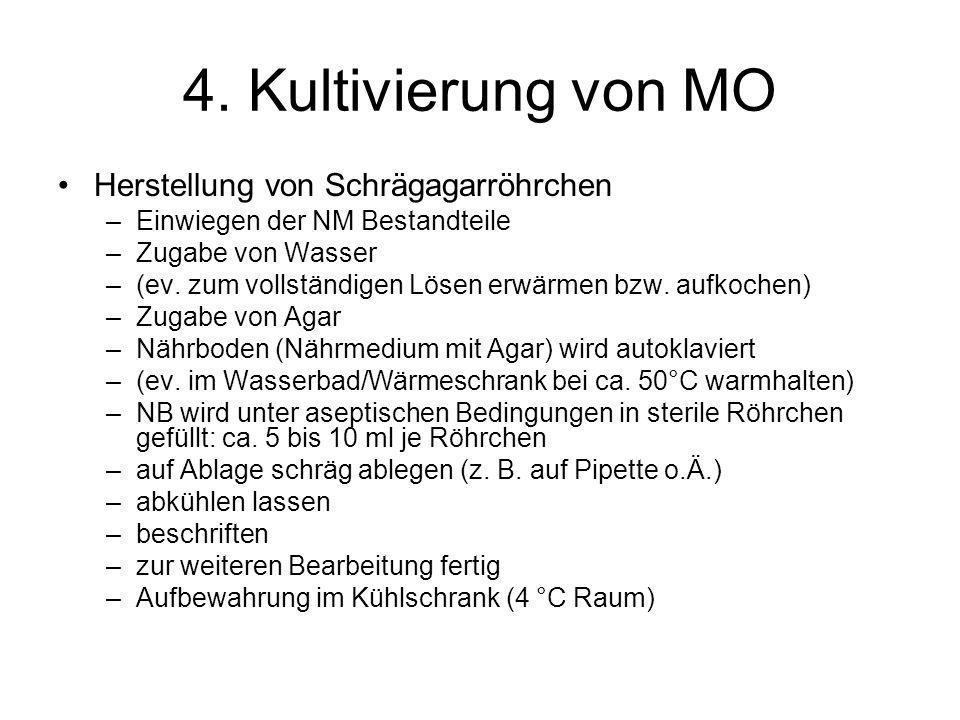 4. Kultivierung von MO Herstellung von Schrägagarröhrchen