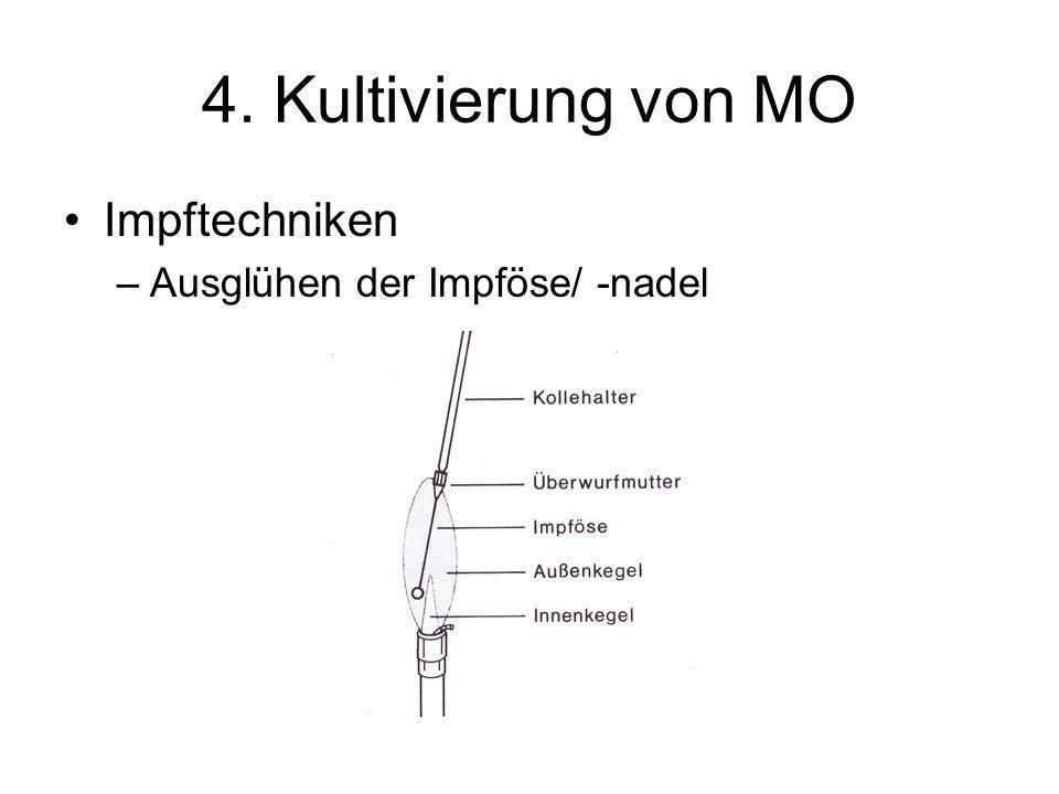 4. Kultivierung von MO Impftechniken Ausglühen der Impföse/ -nadel