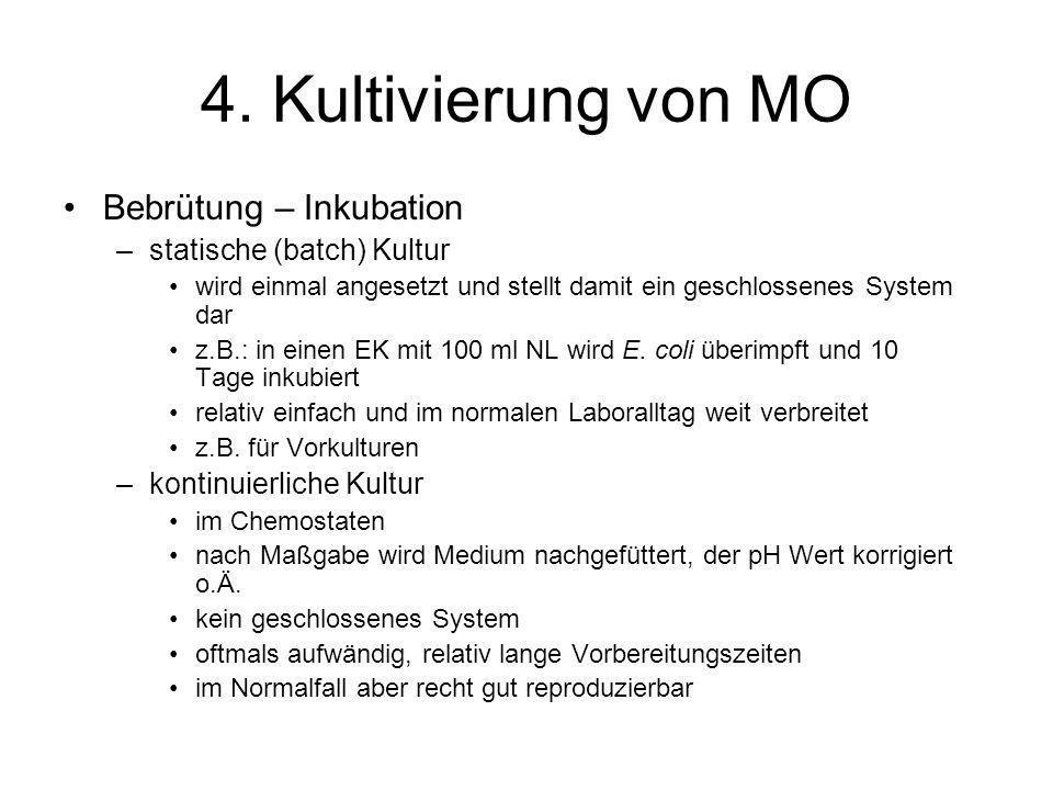 4. Kultivierung von MO Bebrütung – Inkubation statische (batch) Kultur