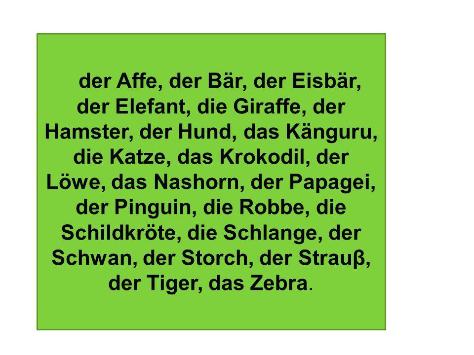 der Affe, der Bär, der Eisbär, der Elefant, die Giraffe, der Hamster, der Hund, das Känguru, die Katze, das Krokodil, der Löwe, das Nashorn, der Papagei, der Pinguin, die Robbe, die Schildkröte, die Schlange, der Schwan, der Storch, der Strauβ, der Tiger, das Zebra.