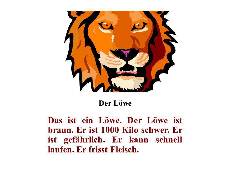 Der Löwe Das ist ein Löwe. Der Löwe ist braun. Er ist 1000 Kilo schwer.