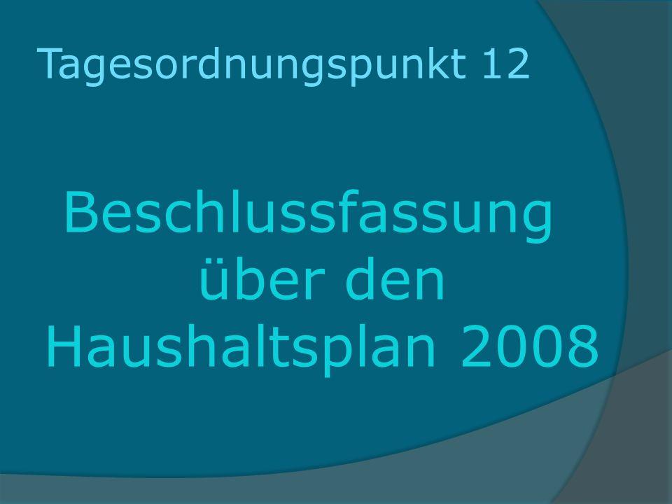Beschlussfassung über den Haushaltsplan 2008