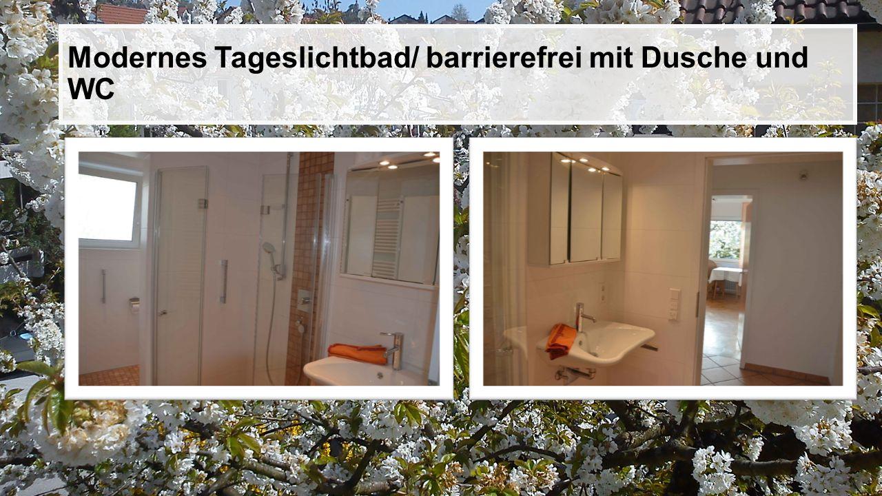 Modernes Tageslichtbad/ barrierefrei mit Dusche und WC