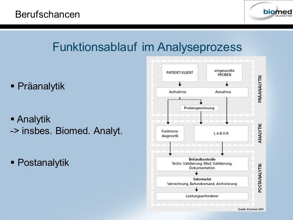 Funktionsablauf im Analyseprozess