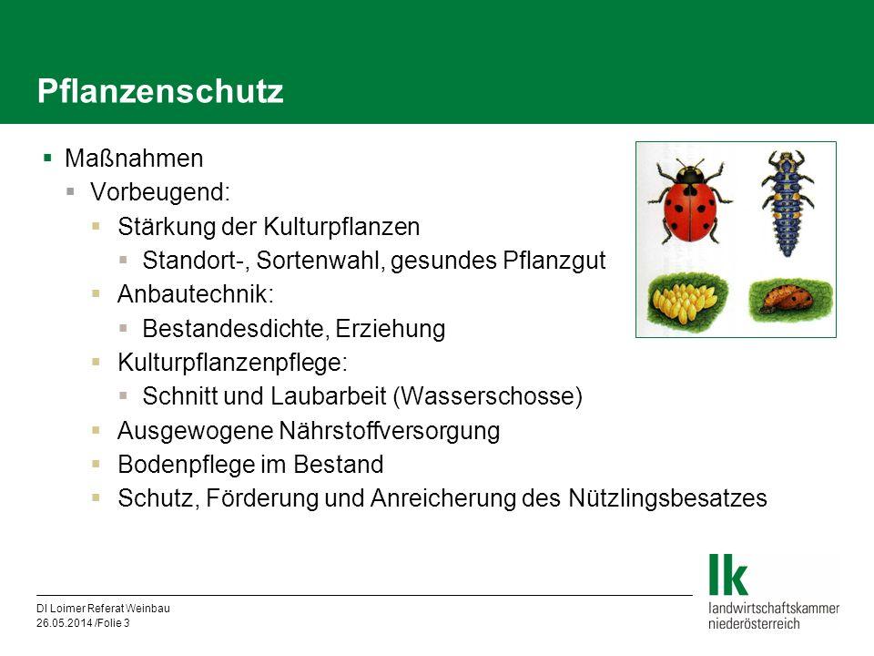 Pflanzenschutz Maßnahmen Vorbeugend: Stärkung der Kulturpflanzen