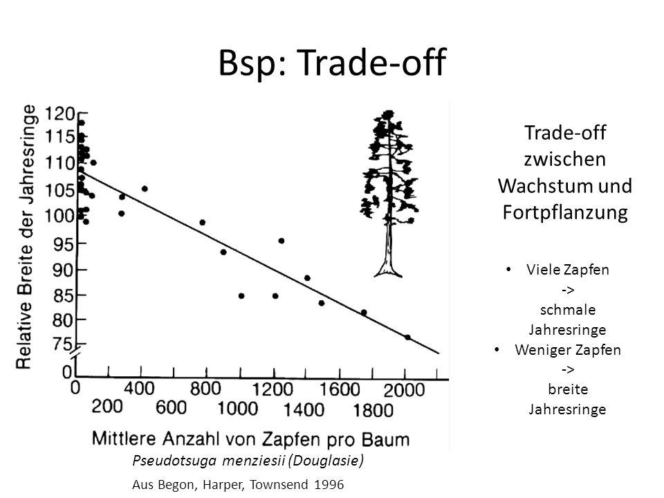 Bsp: Trade-off Trade-off zwischen Wachstum und Fortpflanzung