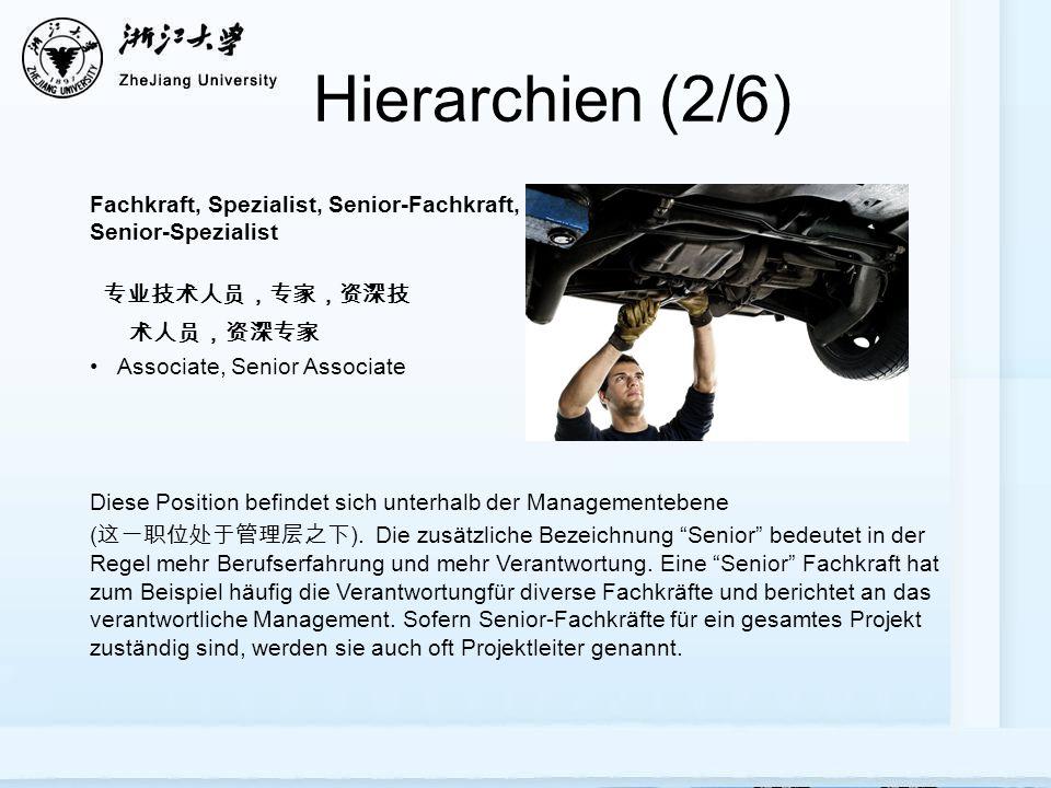 Hierarchien (2/6) 专业技术人员,专家,资深技