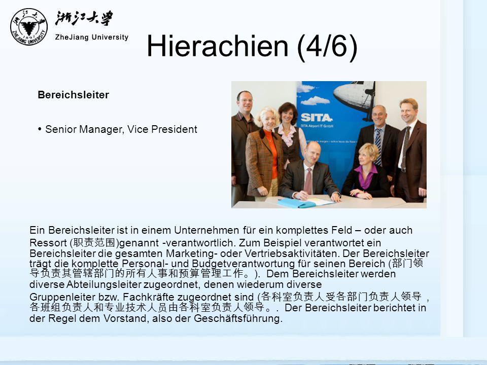Hierachien (4/6) Senior Manager, Vice President Bereichsleiter