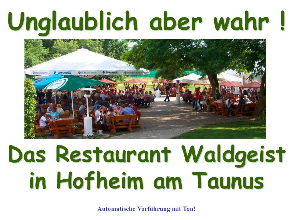Das Restaurant Waldgeist Automatische Vorführung mit Ton!