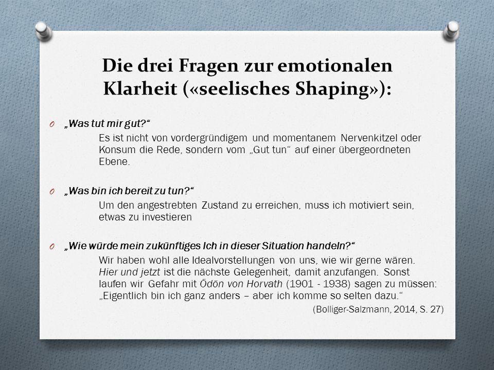 Die drei Fragen zur emotionalen Klarheit («seelisches Shaping»):