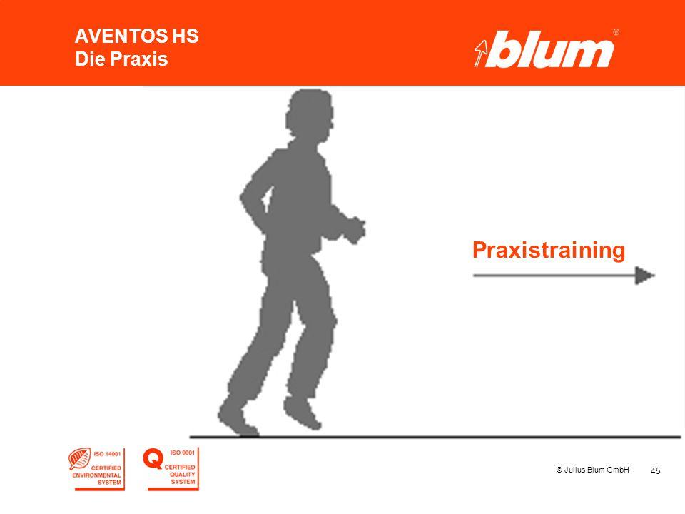 AVENTOS HS Die Praxis Praxistraining © Julius Blum GmbH