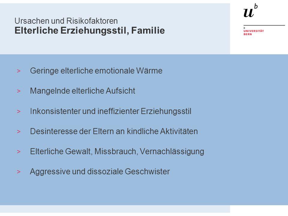 Ursachen und Risikofaktoren Elterliche Erziehungsstil, Familie