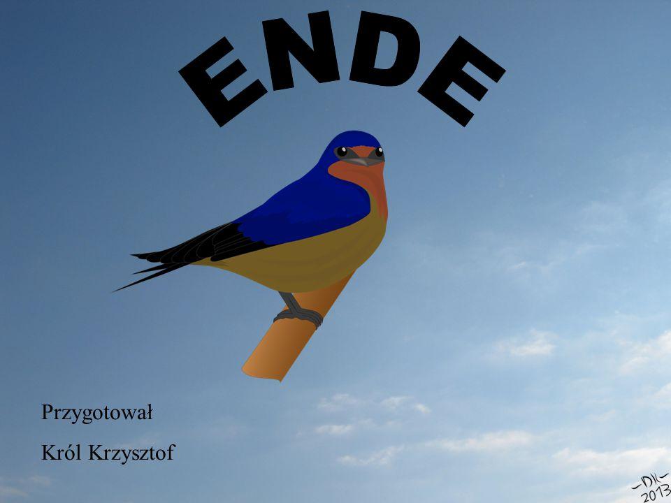 ENDE Przygotował Król Krzysztof