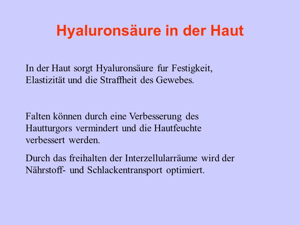Hyaluronsäure in der Haut