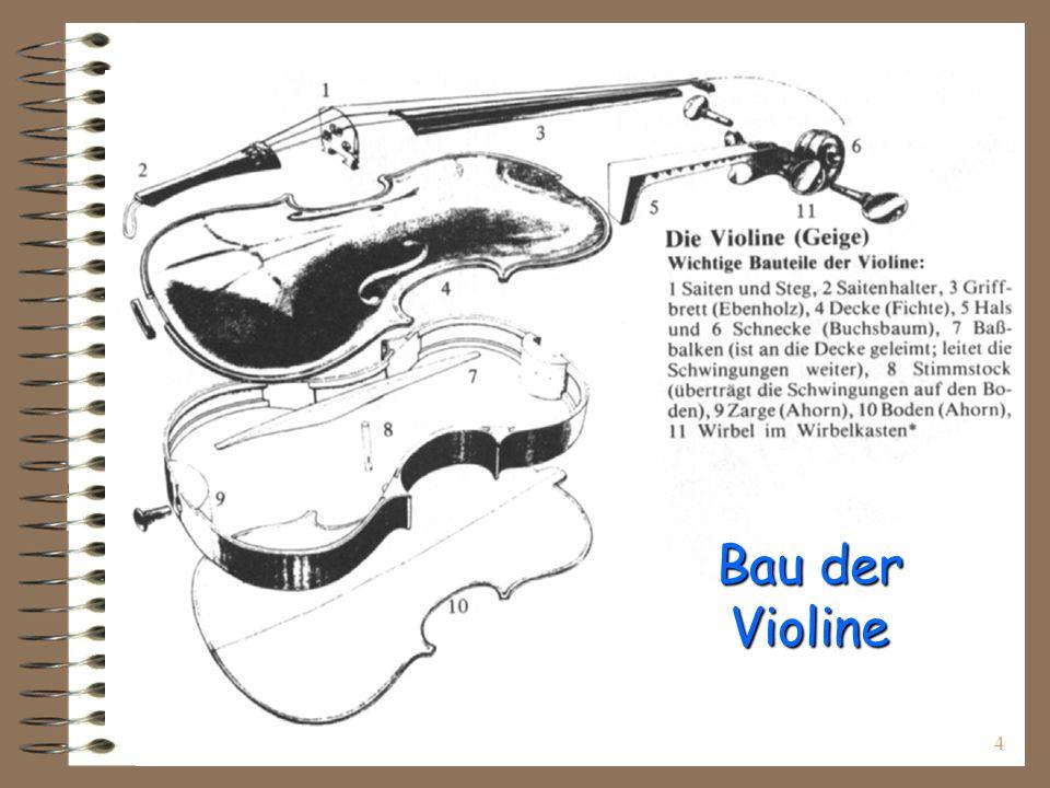 Bau der Violine