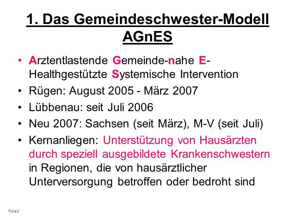 1. Das Gemeindeschwester-Modell AGnES