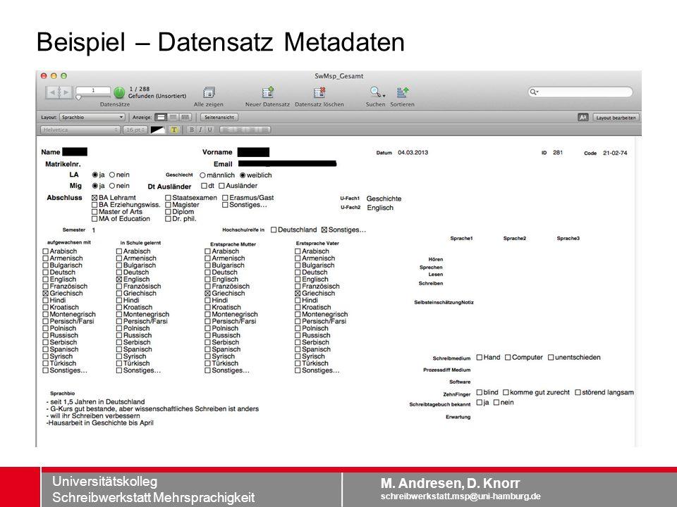 Beispiel – Datensatz Metadaten