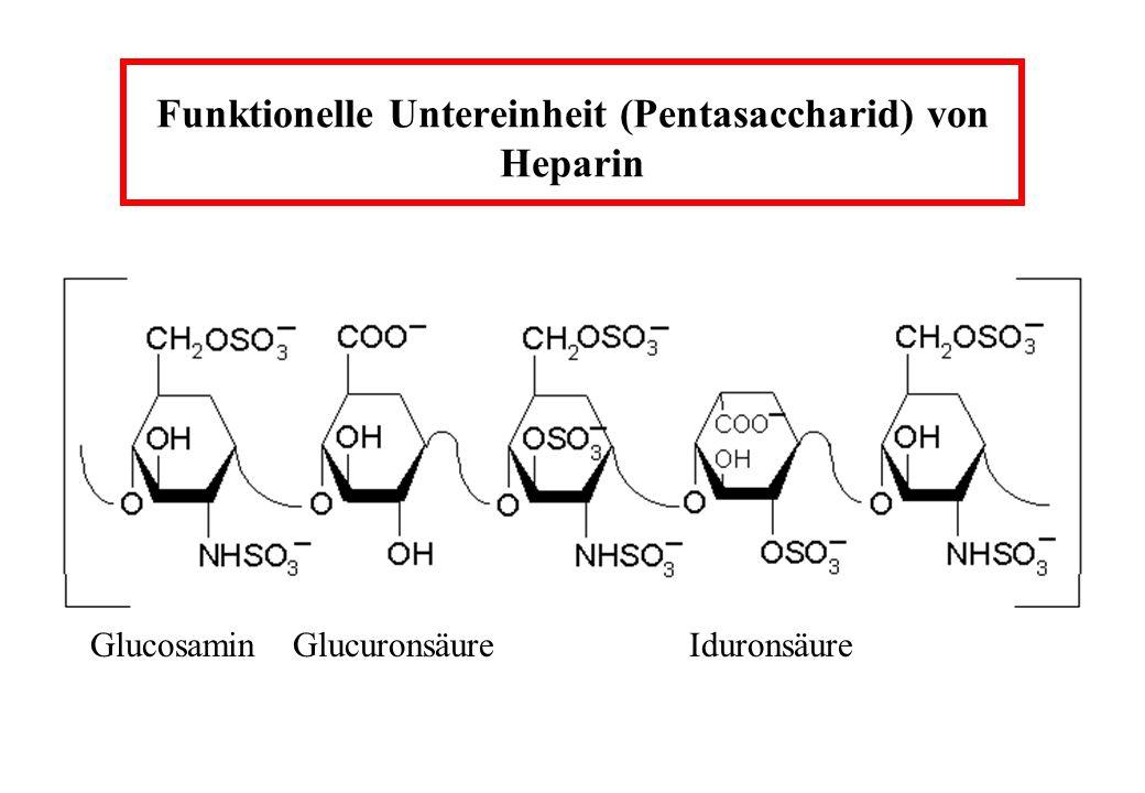 Funktionelle Untereinheit (Pentasaccharid) von Heparin