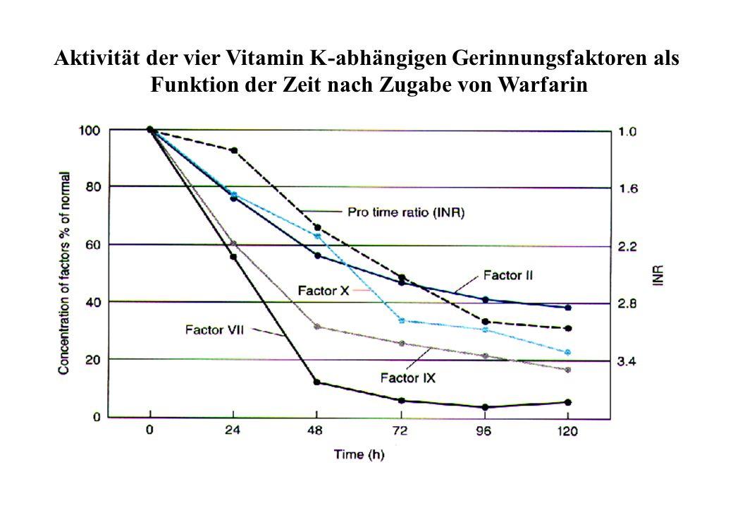 Aktivität der vier Vitamin K-abhängigen Gerinnungsfaktoren als
