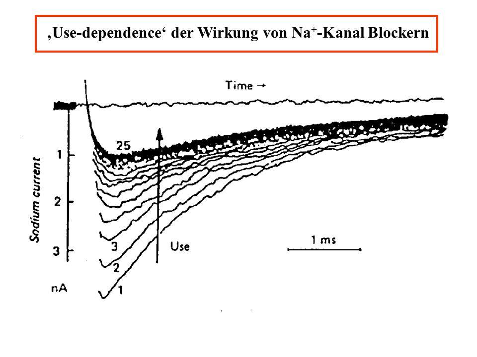 'Use-dependence' der Wirkung von Na+-Kanal Blockern