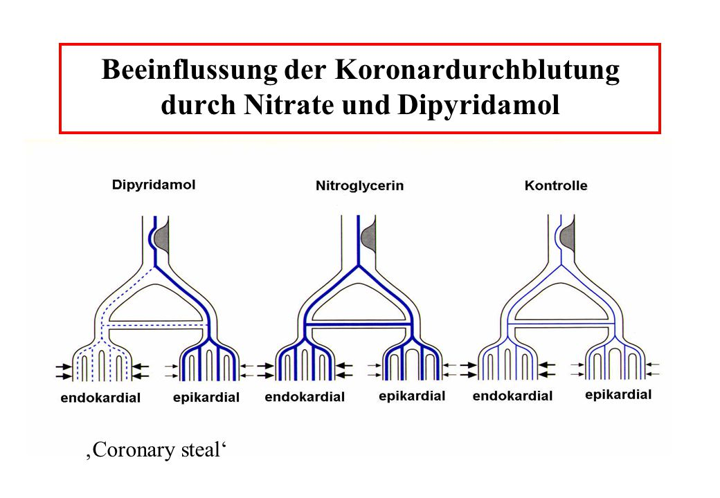 Beeinflussung der Koronardurchblutung durch Nitrate und Dipyridamol