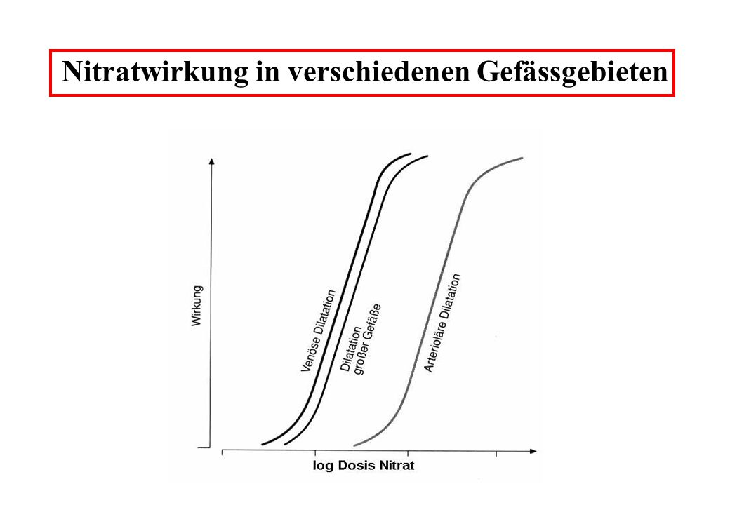 Nitratwirkung in verschiedenen Gefässgebieten