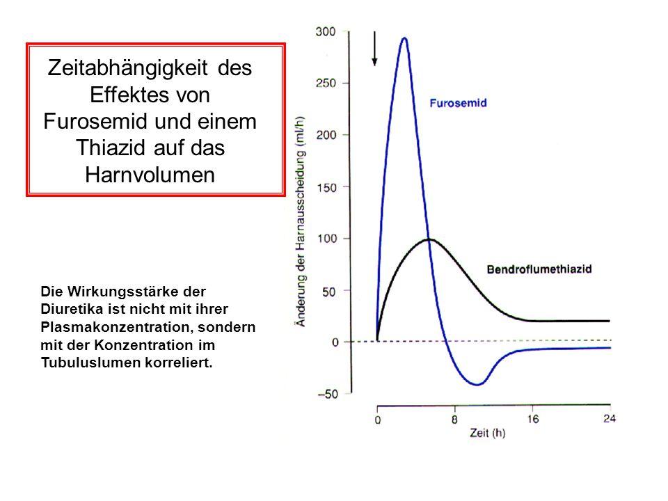 Zeitabhängigkeit des Effektes von Furosemid und einem Thiazid auf das Harnvolumen
