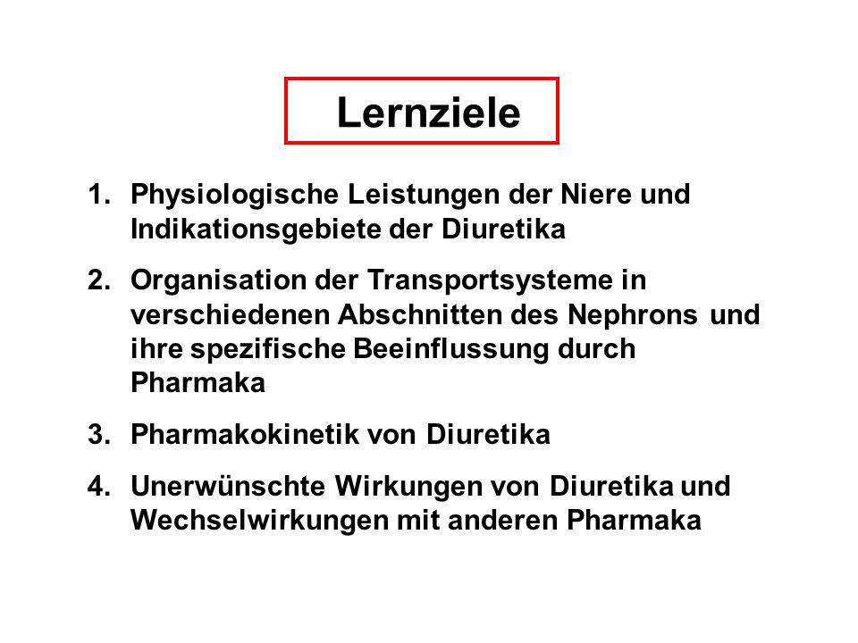 Lernziele Physiologische Leistungen der Niere und Indikationsgebiete der Diuretika.