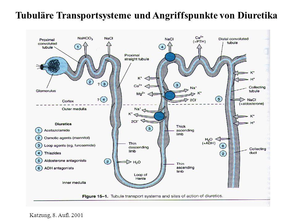 Tubuläre Transportsysteme und Angriffspunkte von Diuretika