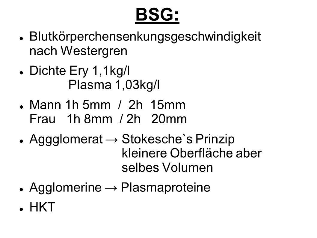 BSG: Blutkörperchensenkungsgeschwindigkeit nach Westergren
