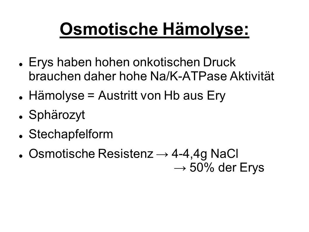 Osmotische Hämolyse: Erys haben hohen onkotischen Druck brauchen daher hohe Na/K-ATPase Aktivität.