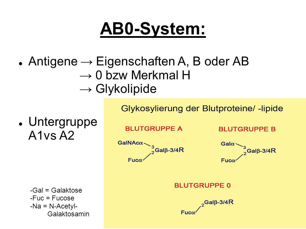 AB0-System: Antigene → Eigenschaften A, B oder AB → 0 bzw Merkmal H → Glykolipide.