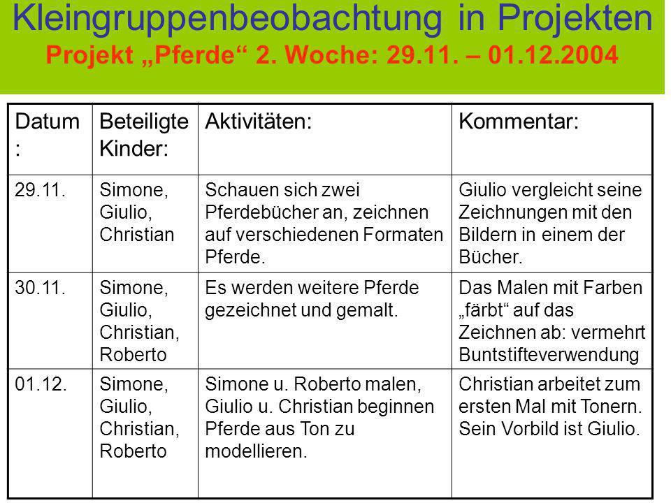 """Kleingruppenbeobachtung in Projekten Projekt """"Pferde 2. Woche: 29. 11"""