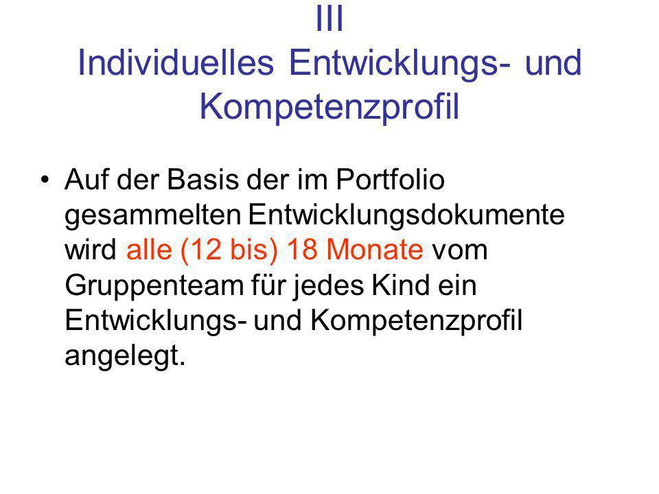 III Individuelles Entwicklungs- und Kompetenzprofil