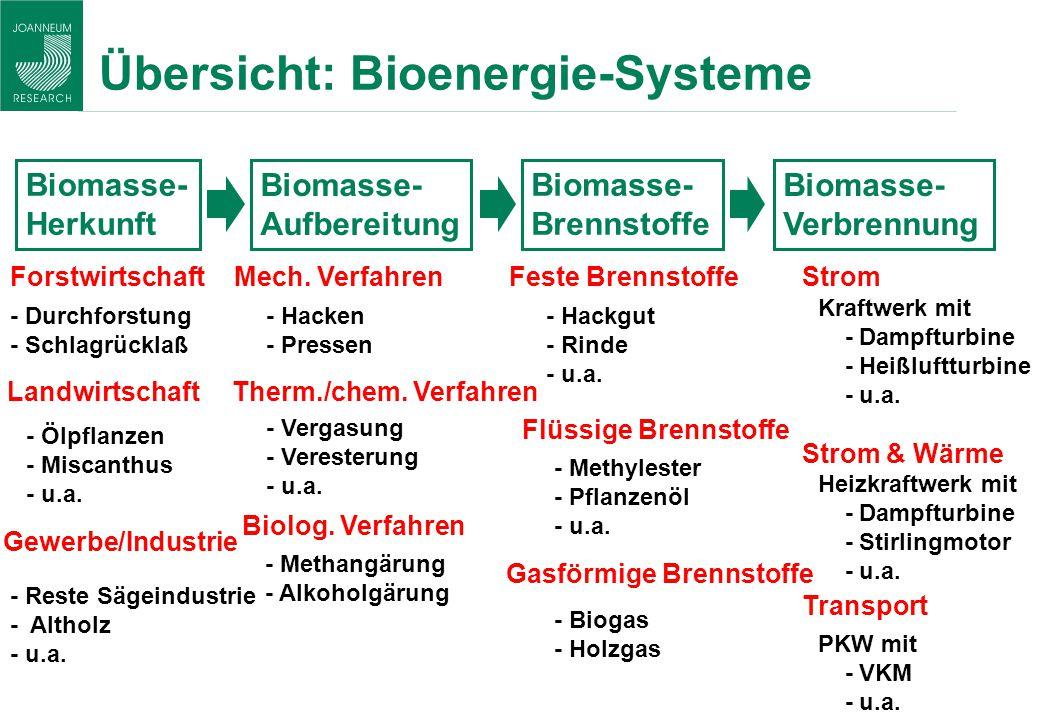 Übersicht: Bioenergie-Systeme