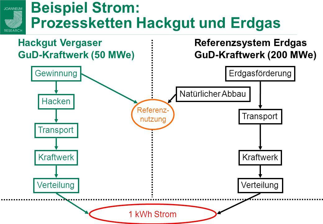 Beispiel Strom: Prozessketten Hackgut und Erdgas