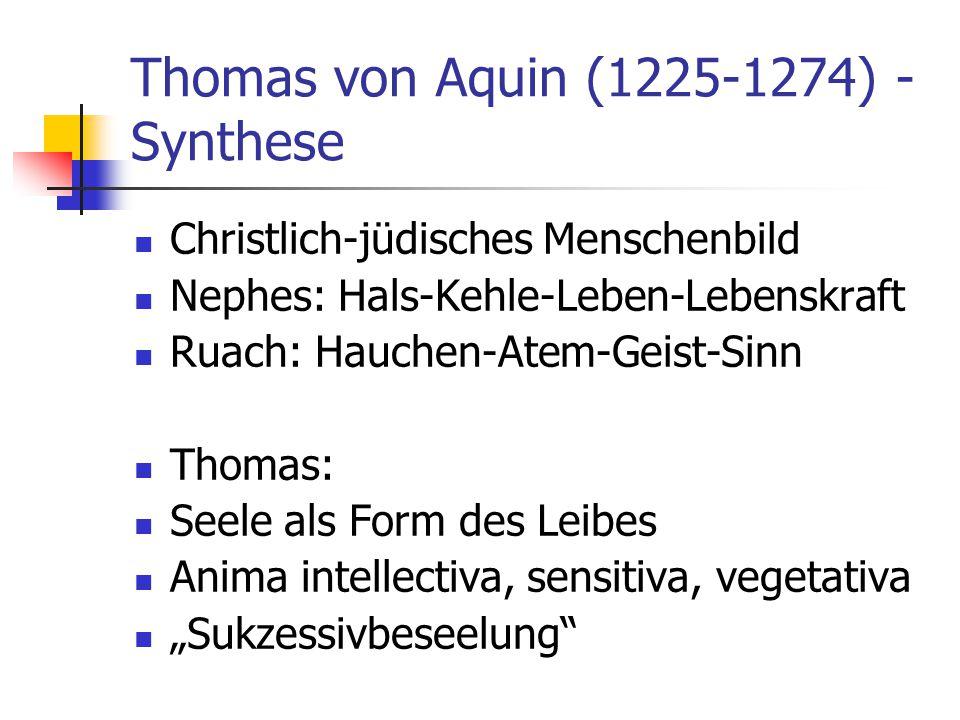 Thomas von Aquin (1225-1274) - Synthese