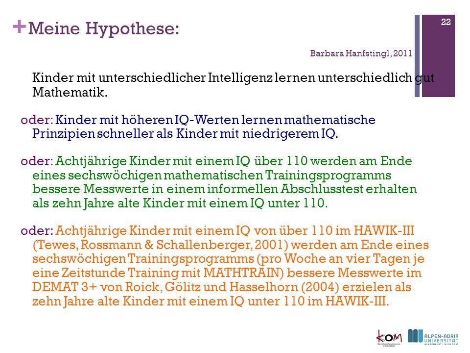 Meine Hypothese: Barbara Hanfstingl, 2011