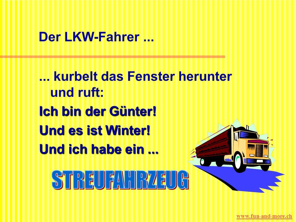 STREUFAHRZEUG Der LKW-Fahrer ...