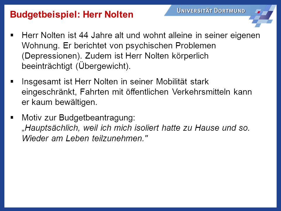 Budgetbeispiel: Herr Nolten