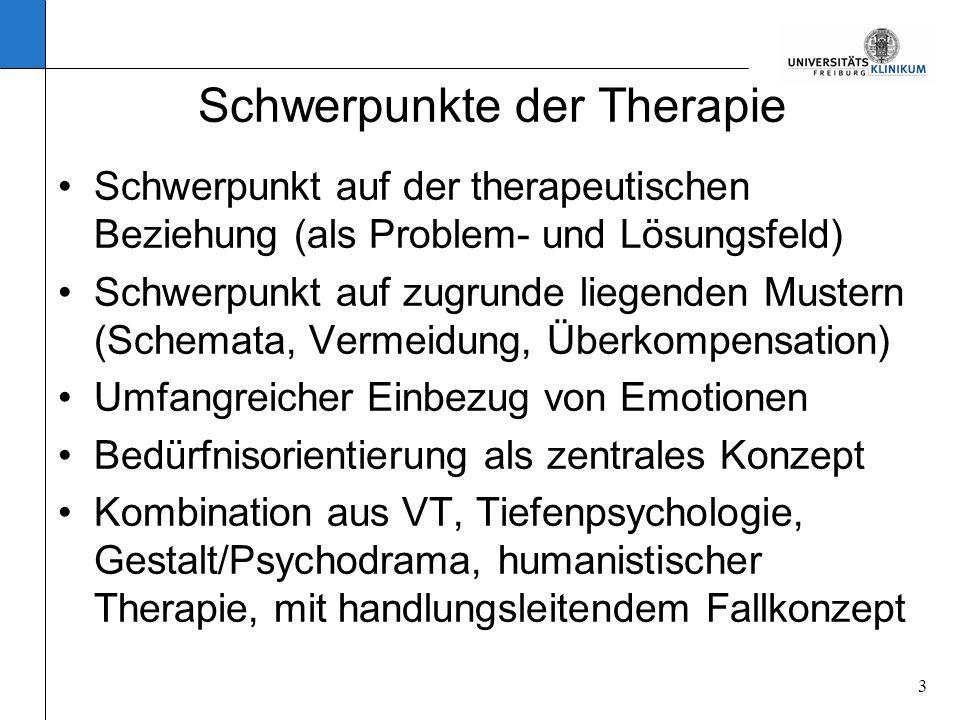 Schwerpunkte der Therapie