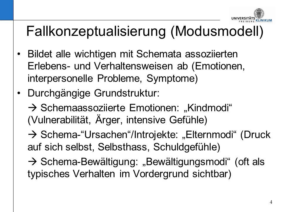 Fallkonzeptualisierung (Modusmodell)