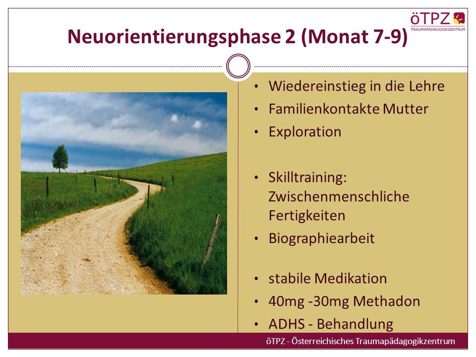 Neuorientierungsphase 2 (Monat 7-9)